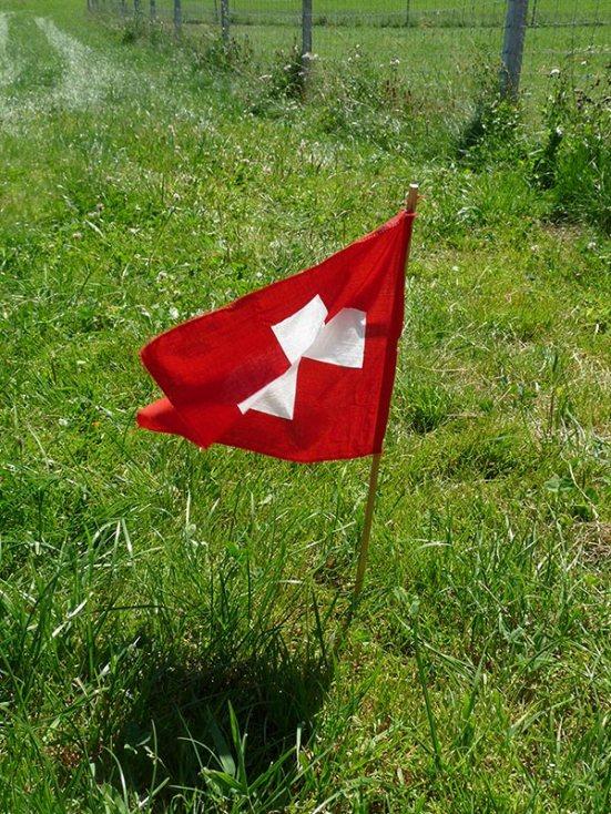 Nous ne sommes pas parti en vacances l'été dernier, nous avons donc passé l'été en Suisse...