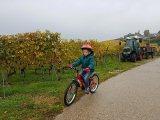 Apprentissage du vélo enfant {Parcours de 2 ans à presque 5ans}